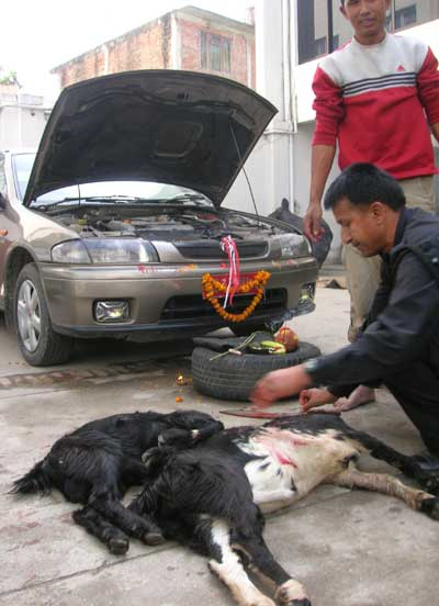 khashi and cars in nepal