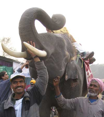 nasir ali father with elephant