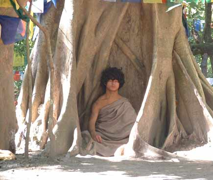 Ram Bahadur Bamjom..the meditating boy under the peepal tree