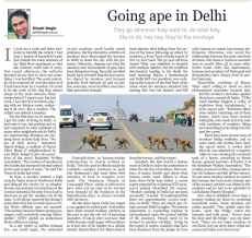 Going ape in delhi. Kathmandu Post 15.08.10