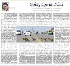 Going ape in delhi. Kathmandu Post 15.08.10