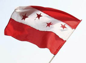 nepali congress flag